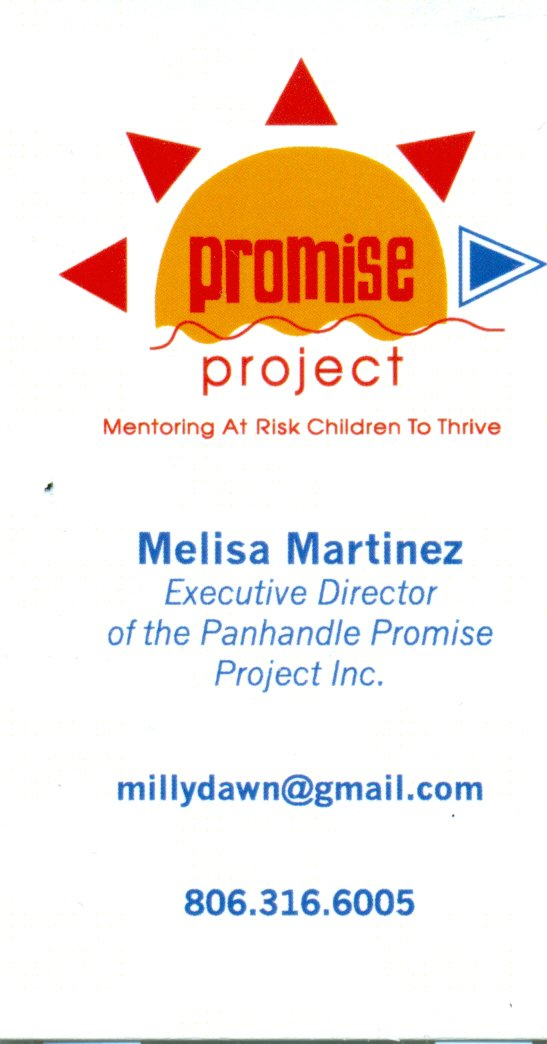 Promise Project2
